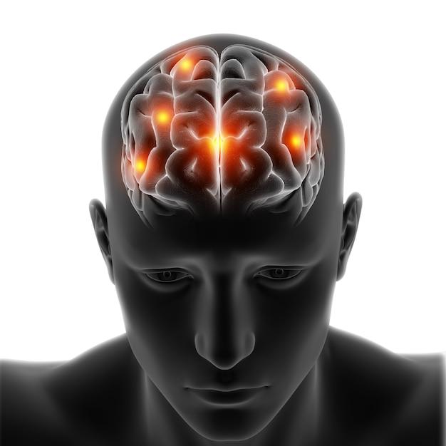 Figure médicale 3d avec le cerveau en surbrillance sur fond blanc Photo gratuit