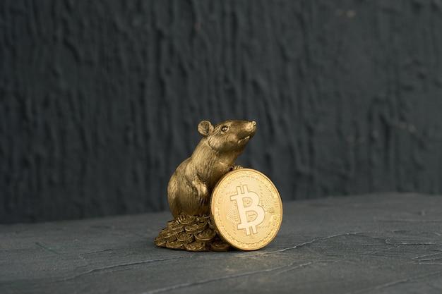 Figurine De Rat De Noël Symbole De La Nouvelle Année 2020 Avec Pièce D'or Bitcoins Photo Premium