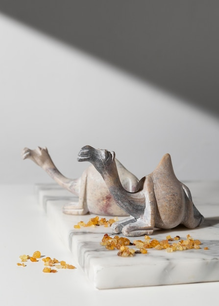 Figurines De Chameau Du Jour De L'épiphanie Aux Raisins Secs Photo gratuit