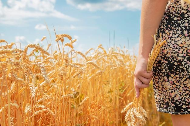 Fille épillets de blé dans les mains. Photo Premium