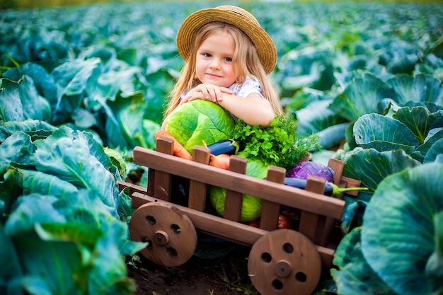 Fille heureuse au chapeau de paille sur le champ de chou avec panier de légumes Photo Premium