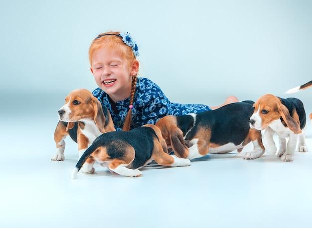 La Fille Heureuse Et Les Chiots Beagle Sur Mur Gris Photo gratuit