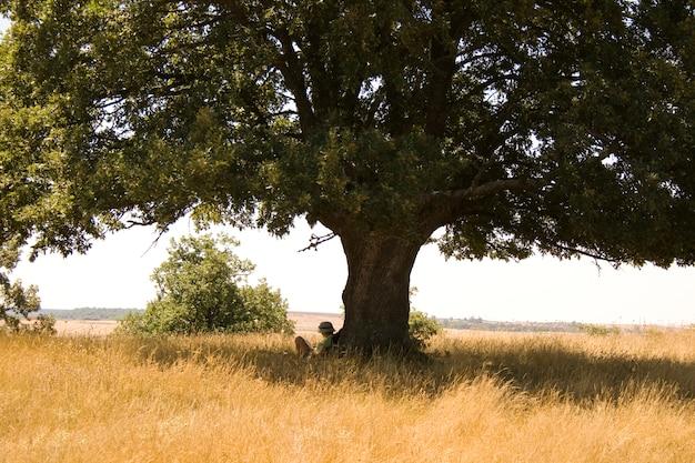 Fille Lisant Sous L'arbre Photo Premium