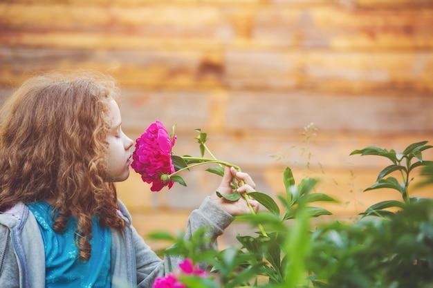 Fille sentant un bouquet de marguerites, photo dans le profil. Photo Premium