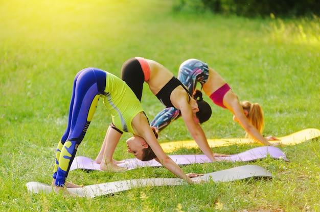 Filles posant le yoga à l'extérieur dans la forêt le matin Photo Premium