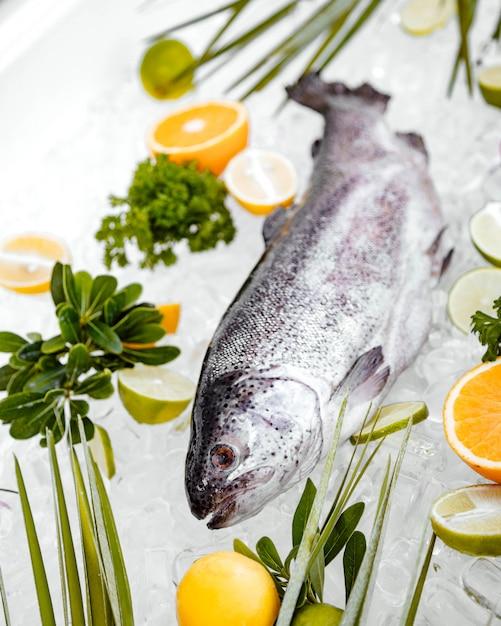 Fin, haut, cru, fish, placé, glace, entouré, fruits Photo gratuit