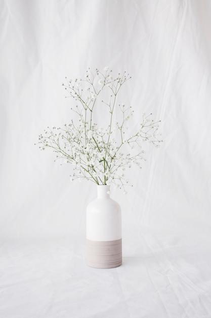Fines Branches De Plantes Vertes Avec Des Fleurs Dans Un Vase Photo gratuit