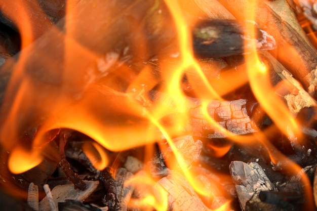 Flammes avec des braises sur un fond de feu Photo Premium