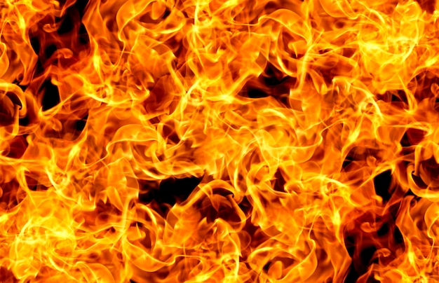 Flammes De Feu Sur Fond Noir Photo Premium