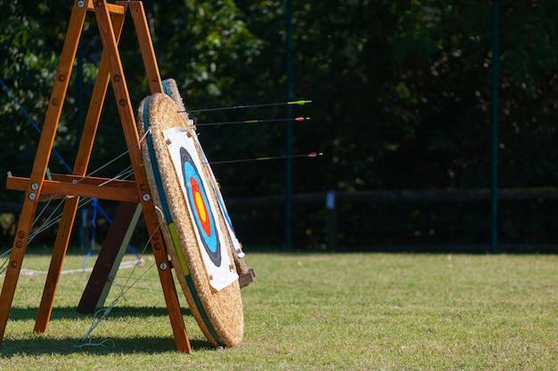 Flèches Incorporées Dans Une Rangée De Cibles De Tir à L'arc. Photo Premium