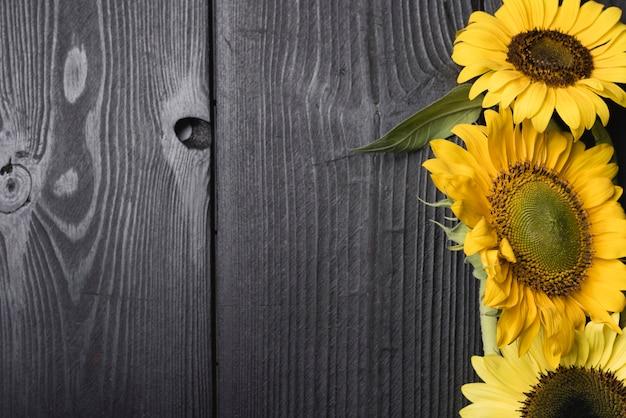 Fleur fraîche de beaux tournesols sur un bureau en bois Photo gratuit