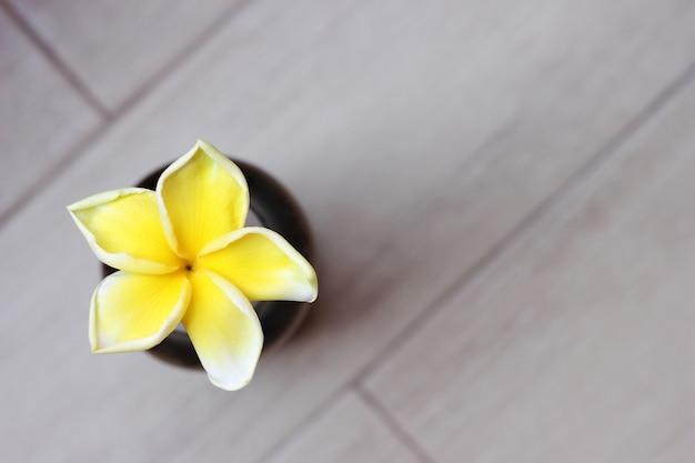 Fleur de frangipanier jaune tropical sur fond gris Photo Premium