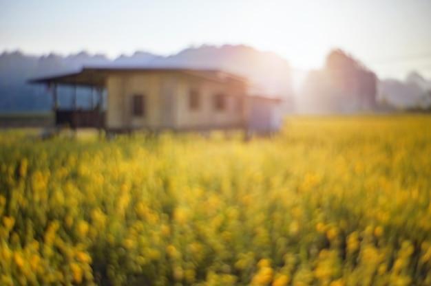 Fleur de nature abstraite floue fleurissent avec fond de montagne. Photo Premium