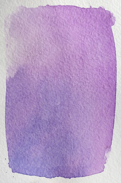 Fleur Rose Clair, Violet, Violet, Bleu Naturel Dessiné à La Main Cadre Abstrait Aquarelle. Espace Pour Le Texte, Le Lettrage, La Copie. Modèle De Carte Postale. Photo Premium