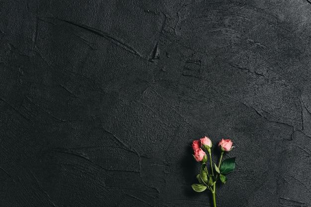Fleur rose sur un fond de ciment sombre Photo Premium
