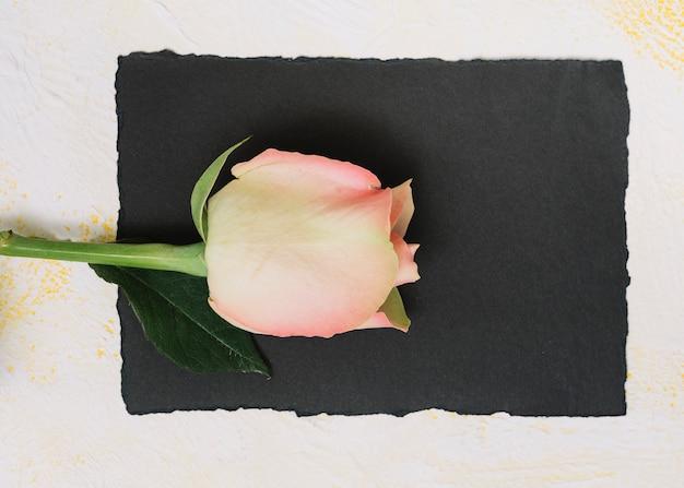 Fleur rose rose avec papier sur tableau blanc Photo gratuit