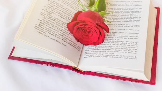 Fleur rose rouge sur le livre Photo gratuit