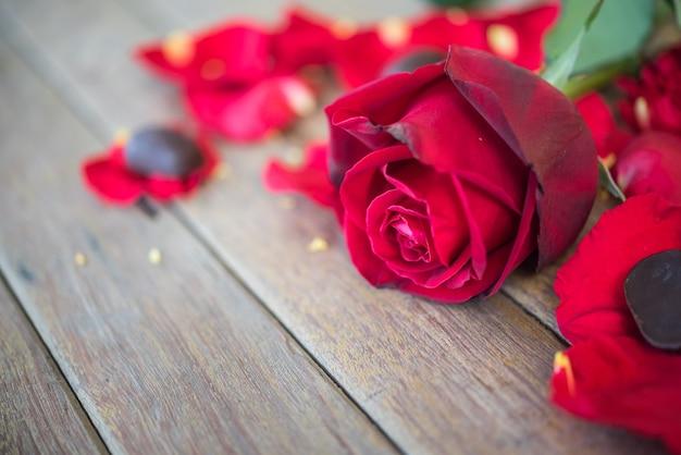 Fleur rose rouge nature belles fleurs du jardin et pétale de fleur rose rouge Photo Premium