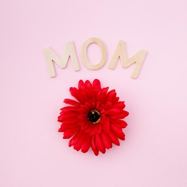Fleur rouge pour la fête des mères Photo gratuit