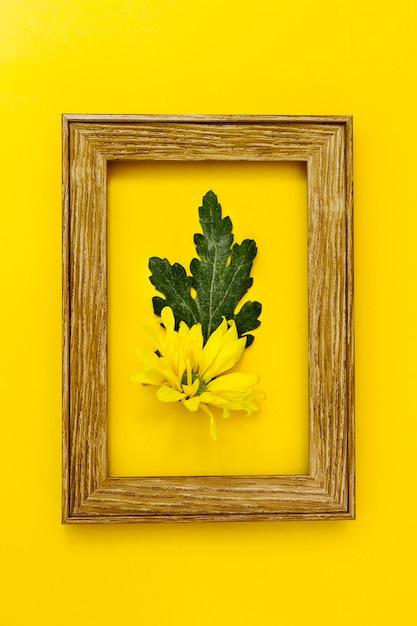 Fleur Vue De Dessus à L'intérieur Du Cadre Photo gratuit