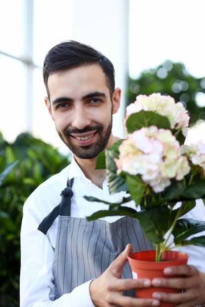 Fleuriste Homme Souriant Avec Portrait D'hortensia Fleur. Jardinier Masculin Gai Tenant Hortensia En Fleurs Dans Un Pot De Fleurs. Photo Premium