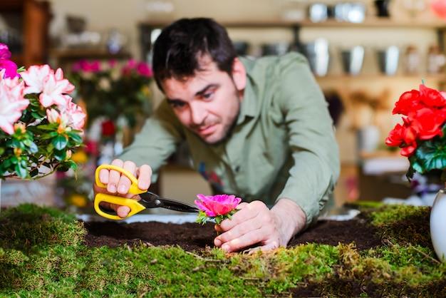 Fleuriste mâle coupant une fleur dans un petit jardin intérieur Photo Premium