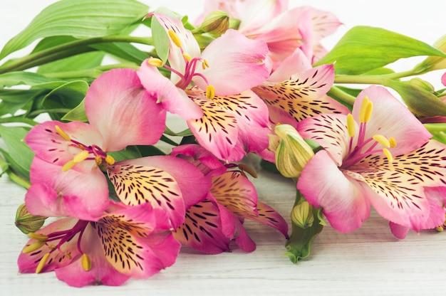 Fleurs alstromeria sur fond en bois Photo Premium