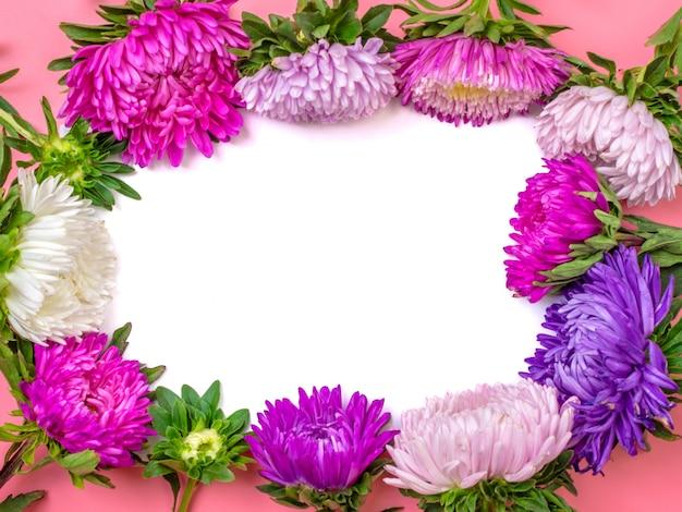 Fleurs de bel aster sur fond de couleur rose pastel. lay plat. Photo Premium