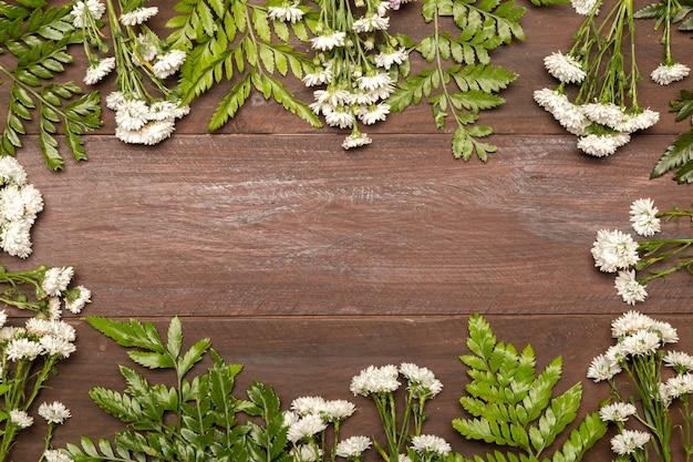 Fleurs blanches et feuilles vertes Photo gratuit