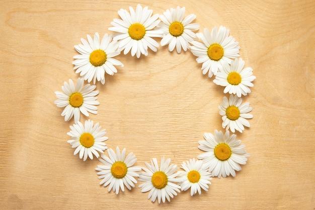 Fleurs De Camomille En Fleurs Photo Premium