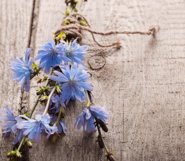 Fleurs De Chicorée Bleue Sur Fond De Bois Photo Premium