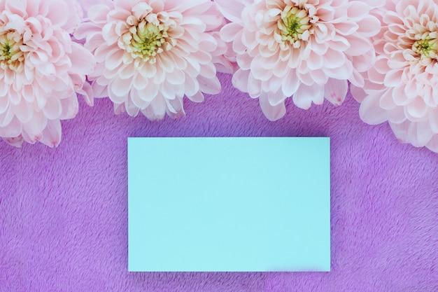 Fleurs De Chrysanthème Rose Clair Et Un Autocollant Bleu Photo Premium
