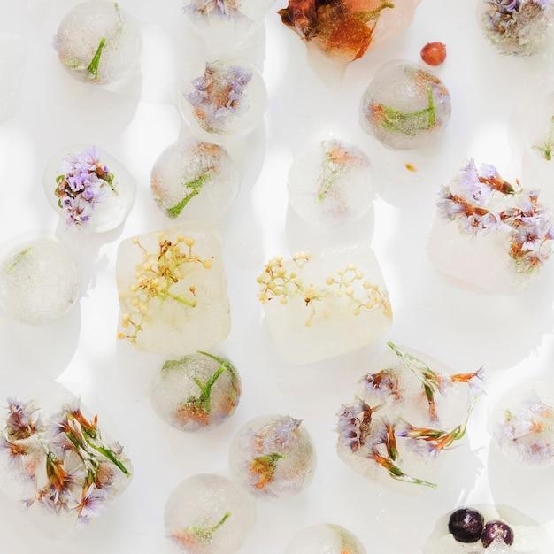 Fleurs Congelées Dans Des Glaçons Photo gratuit