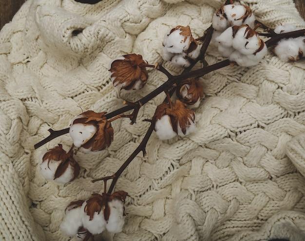 Fleurs De Coton Sur Table En Bois Photo gratuit