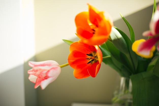 Fleurs dans le vase. la douceur du foyer. journée ensoleillée. beau printemps Photo Premium