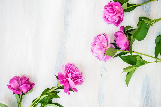 Fleurs d'été avec pivoine Photo Premium