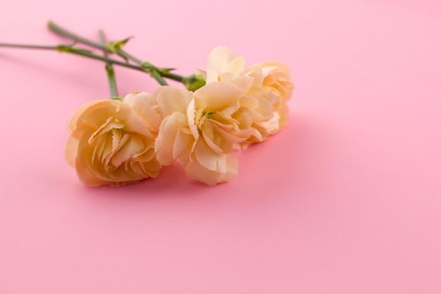 Fleurs sur fond rose Photo Premium