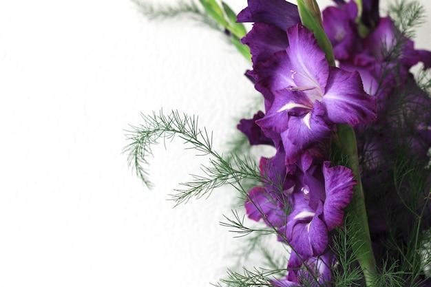 Fleurs de glaïeul violet Photo Premium