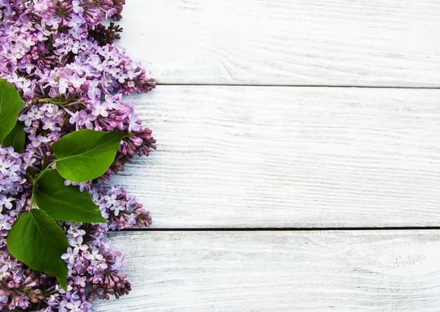 Fleurs lilas Photo Premium