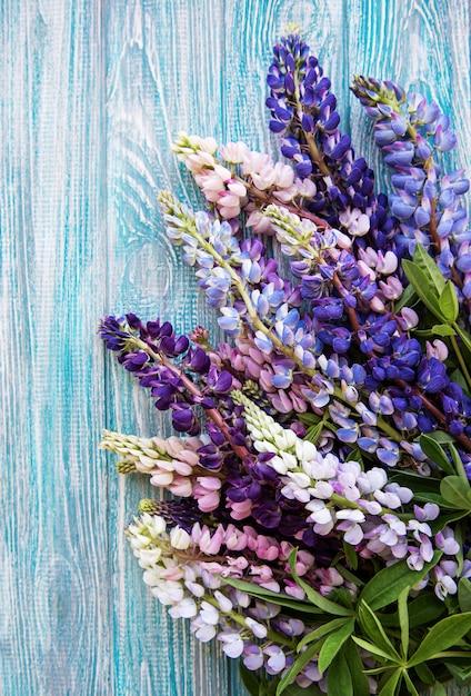Fleurs de lupin rose et violet Photo Premium