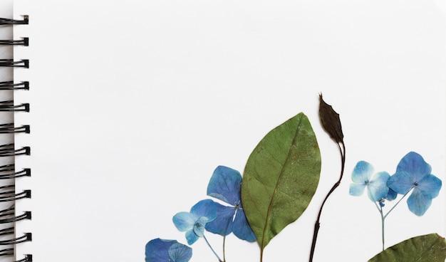 Fleurs naturelles et plantes sur croquis d'art Photo gratuit