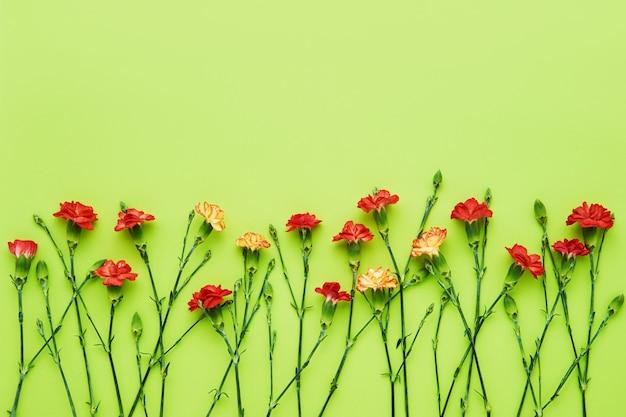 Fleurs D'oeillet Rouge Sur Fond Vert. Photo Premium