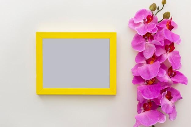 Fleurs d'orchidée fraîches roses avec cadre photo vide vide sur une surface blanche Photo gratuit
