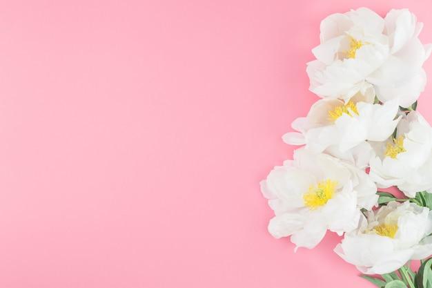Fleurs de pivoine blanches en fleurs Photo Premium
