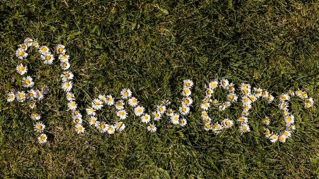 Fleurs en plein air Photo gratuit