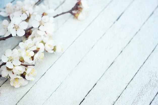 Fleurs de printemps sur fond de table en bois. fleur de prunier Photo Premium