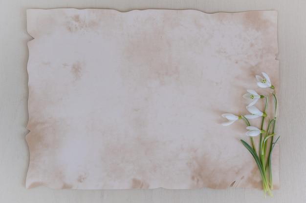 Les fleurs de printemps sont des perce-neige et du papier pour texte sur un fond en bois Photo Premium