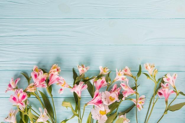 Fleurs rose vif dispersés sur une table en bois Photo gratuit