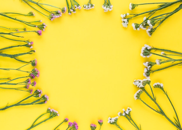 Fleurs roses et blanches circulaires sur fond jaune Photo gratuit