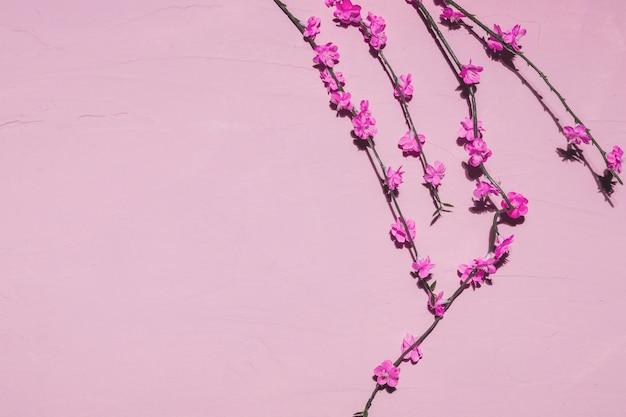 Fleurs roses dans une branche Photo gratuit
